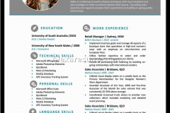 Professional Resume Examples 2016